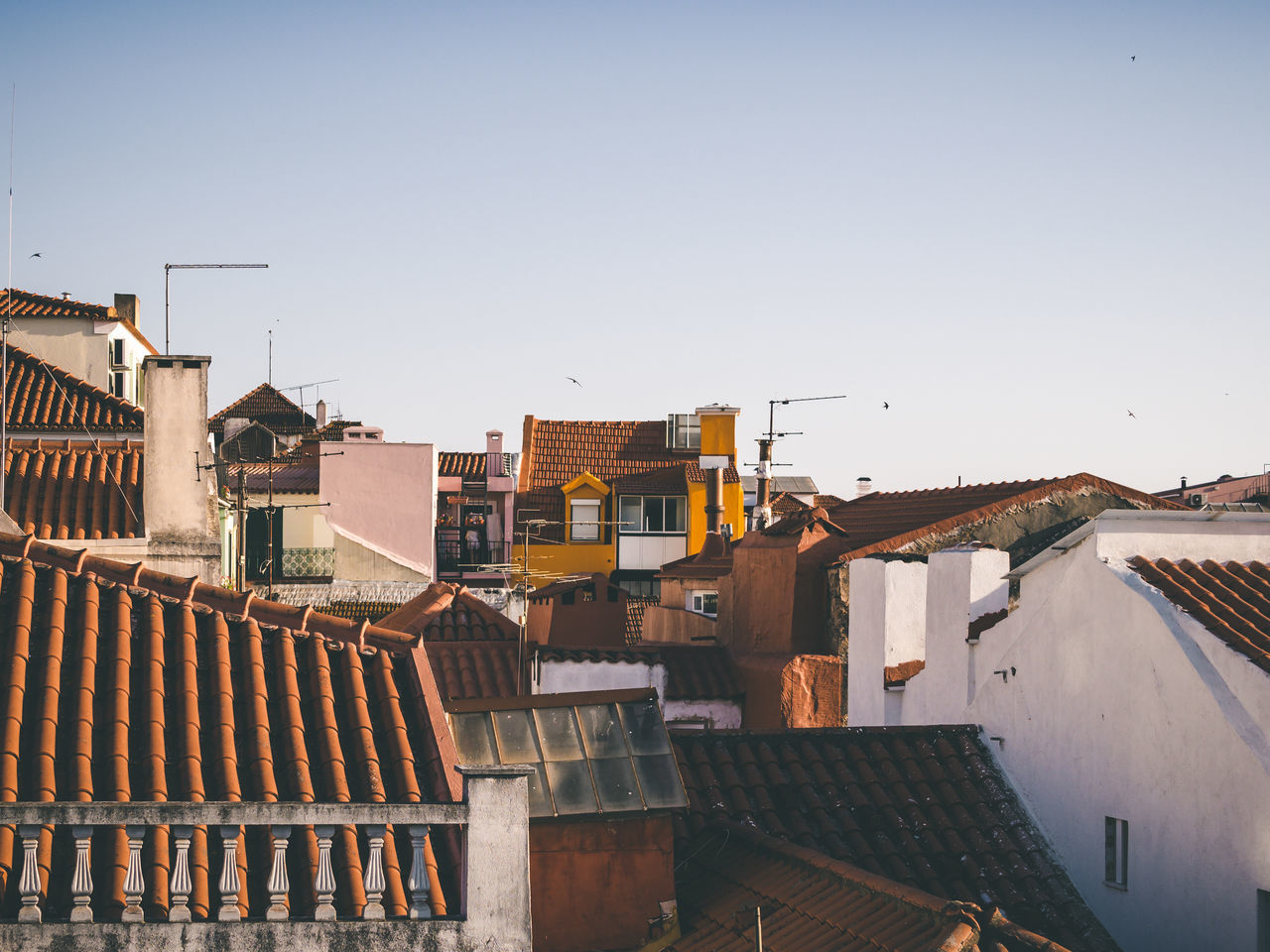 Architecture Building Exterior Built Structure City Citylandscape Cityscape Clear Sky Day House Lisboa Lisbon Lisbon Houses No People Outdoors Portugal Residential Building Roof Roof Landscape Rooftops Sky Street Tiled Roof  Town Townlandscape Yellow House