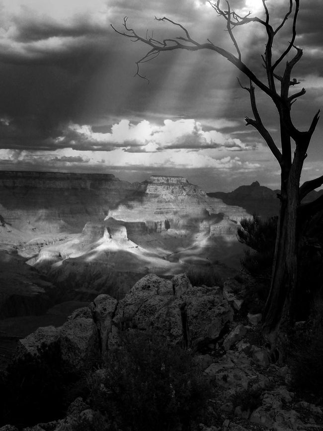 Grand Canyon Eye4photography  Monochrome Shootermag Landscape Light Blackandwhite