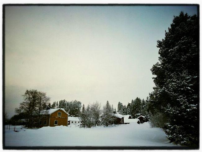 Landscape Winter Snow Bälinge