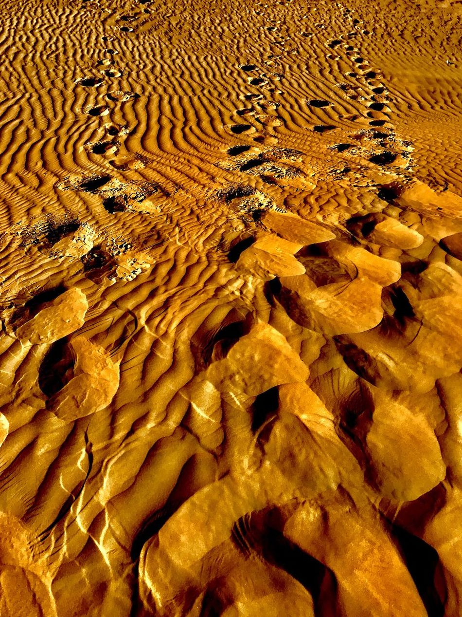 Dubai Desert Safari Full Frame No People Pattern Nature Day Backgrounds Yellow Outdoors Desert Close-up Beauty In Nature