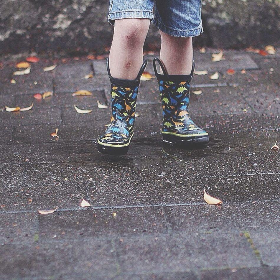 Rain and gumboots! 💦☔️ Gumboots Kinda Day Rain Weather Leaves