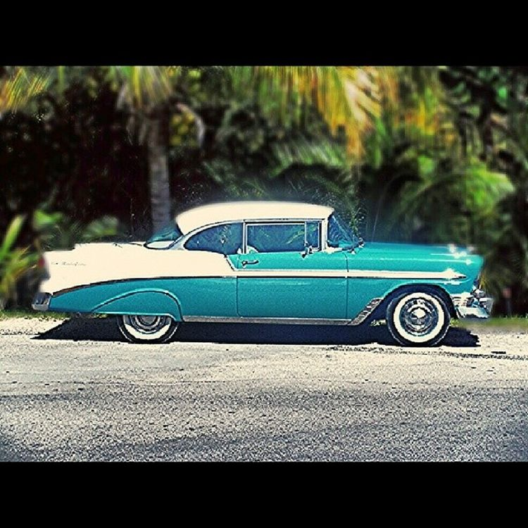 Chevy Belair Palmtrees Musclecars classicCARS cars Mexico Vacation Honeymoon