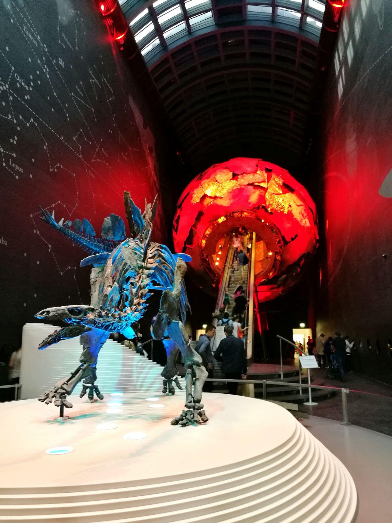 Londres ScienceMuseum First Eyeem Photo