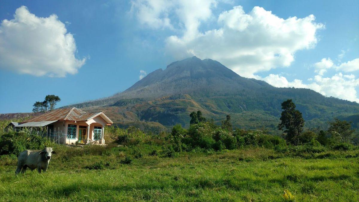 Gunung Sinabung Sinabung Mountain Volcanic Landscape Cloud - Sky Landscape No People Tree Nature Sinabung Sumatera Utara INDONESIA