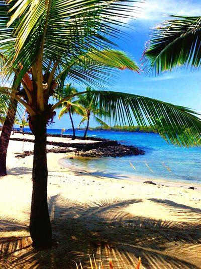 Hawaii Kona Bigislandhawaii Beautiful Beach