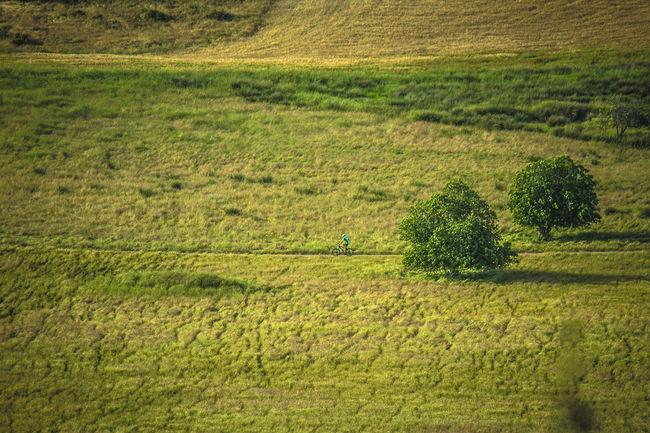Andalucía Nature Campina Ciclistas Field Grass Green Color Jaen Province Landscape Linares Minimalismo Rural Scene