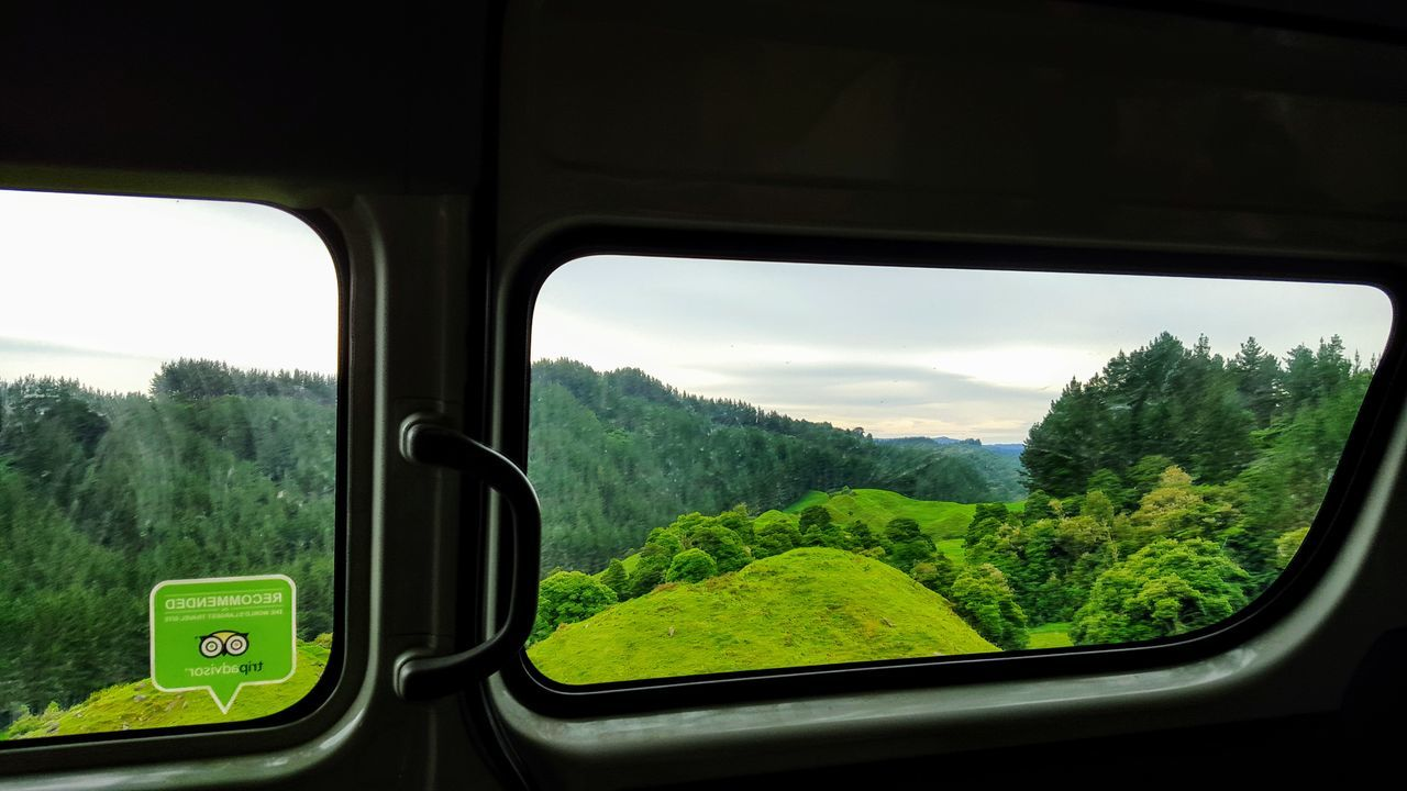 Day Driving Landscape Nature No People Outdoors Roadtrip Rural Scene Sky Transportation Tree