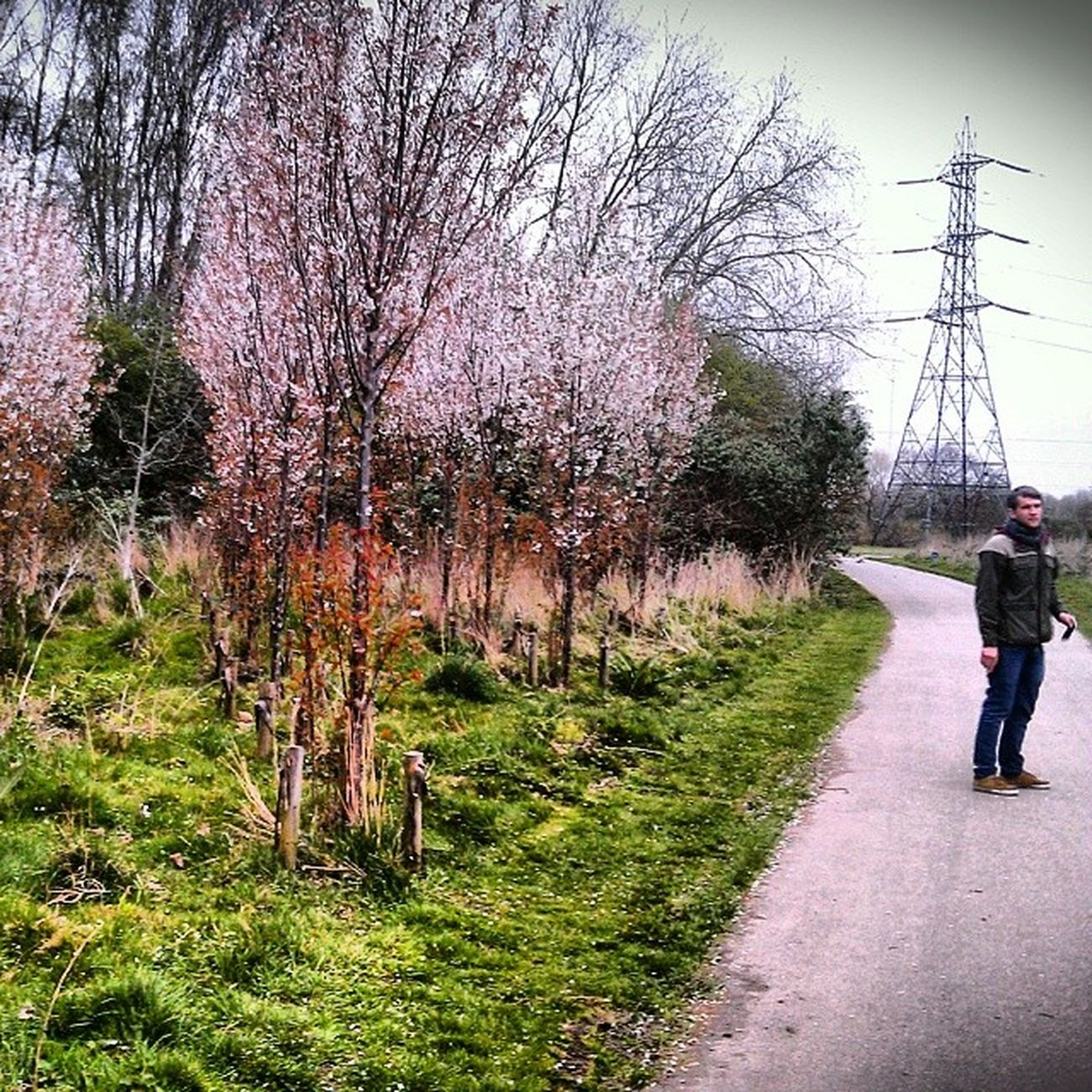 Lost on the way to Hackney Marsh. But Spring is here! Spring Blossom Hackney Powerlinesaresoscenic