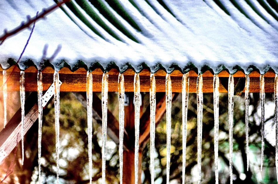 Roof Icicles Wintertime Snow Cold Temperature White Color Nature Close-up Outdoors Day Szczecin Poland