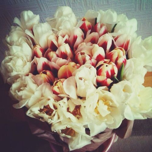 Flowers for me) First Eyeem Photo