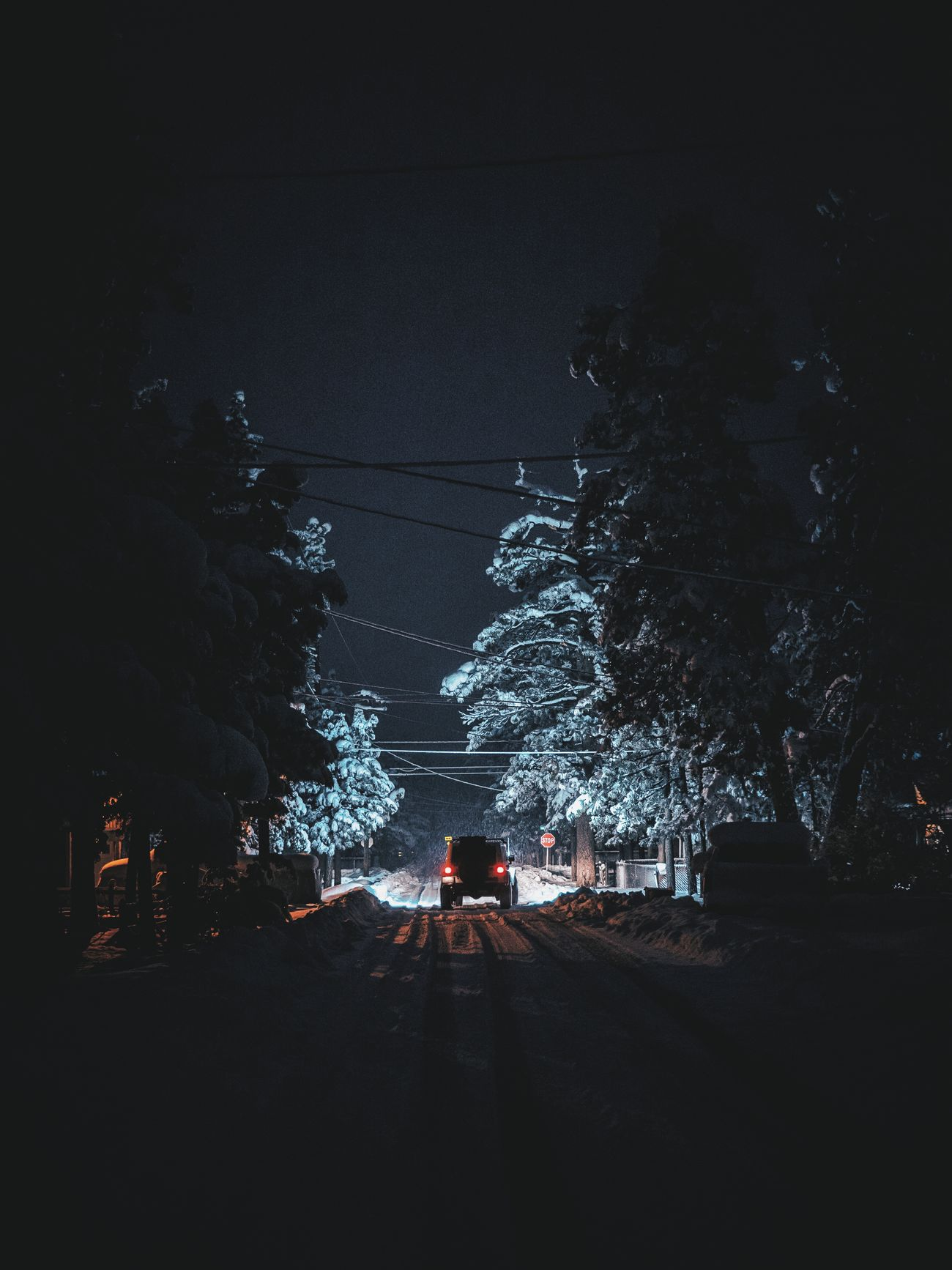 Night Illuminated Outdoors Environment Winter Wonderland Snowing Nature Naturelover StillLife Beauty In Everything EyeEm Best Shots Sonyalpha EyeEm Gallery EyeEmBestPics WeekOnEyeEm Eyeemphotography Naturephotography Sonyphotography Travel Destinations Travel Winter Snow Bigbear California Nature Photography The Great Outdoors - 2017 EyeEm Awards
