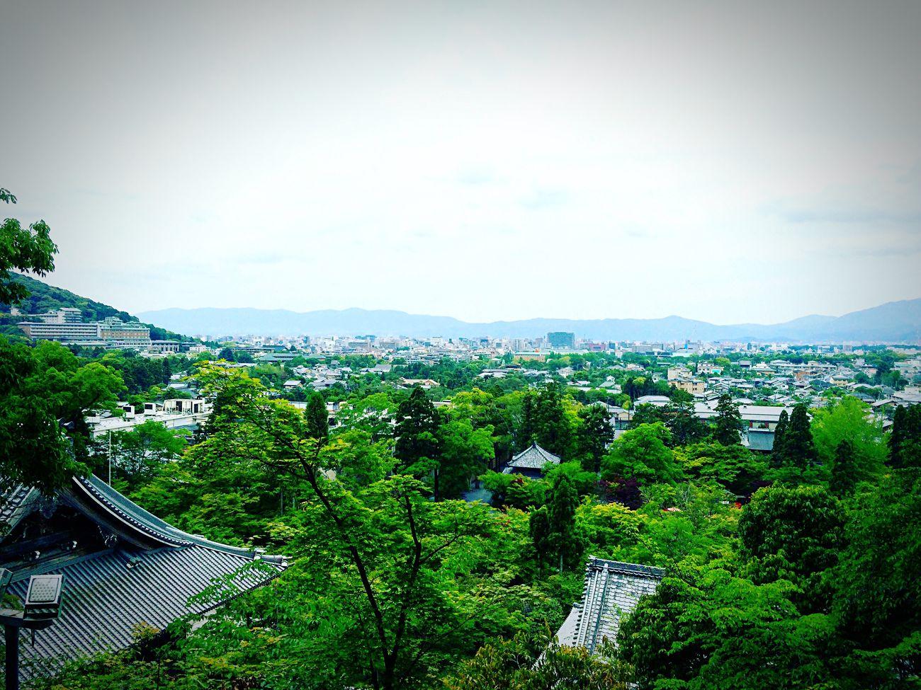 永観堂 禅林寺 多宝塔 京都 市内一望 Kyotojapan Enjoying Life