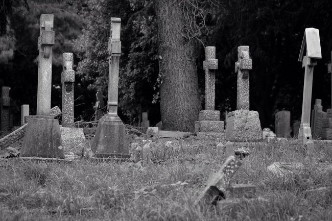Black & White Old Cemetery Churchyard Burial Ground Graveyard Graveyard Beauty Blackandwhite Black&white Creative Photography Darkart Photography Canon Canonphotography South West London Monochrome Blancoynegro
