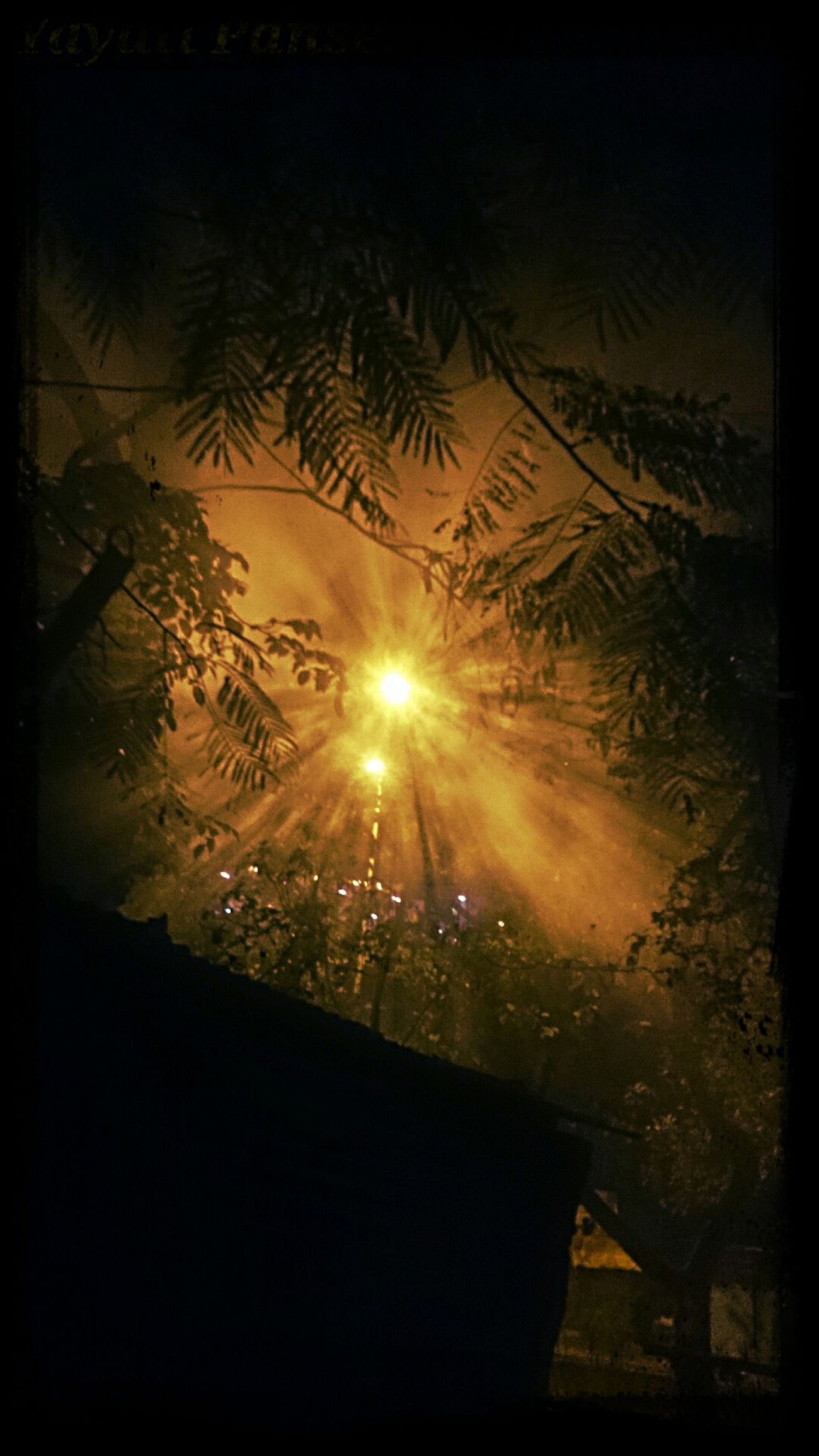 Fog and street light… Throught My Sony XperiaZ1..