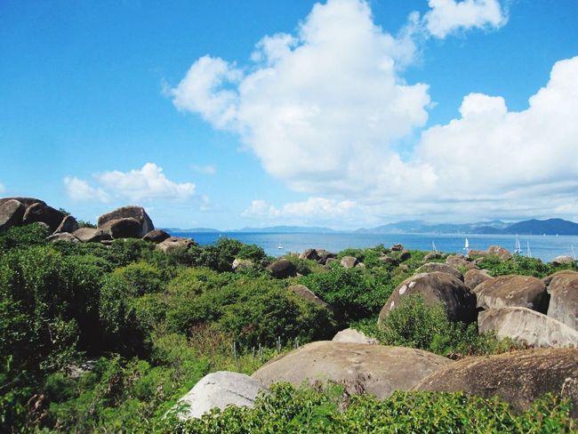 Virgin Gorda Caribbean Sea Blue Sky Greenery