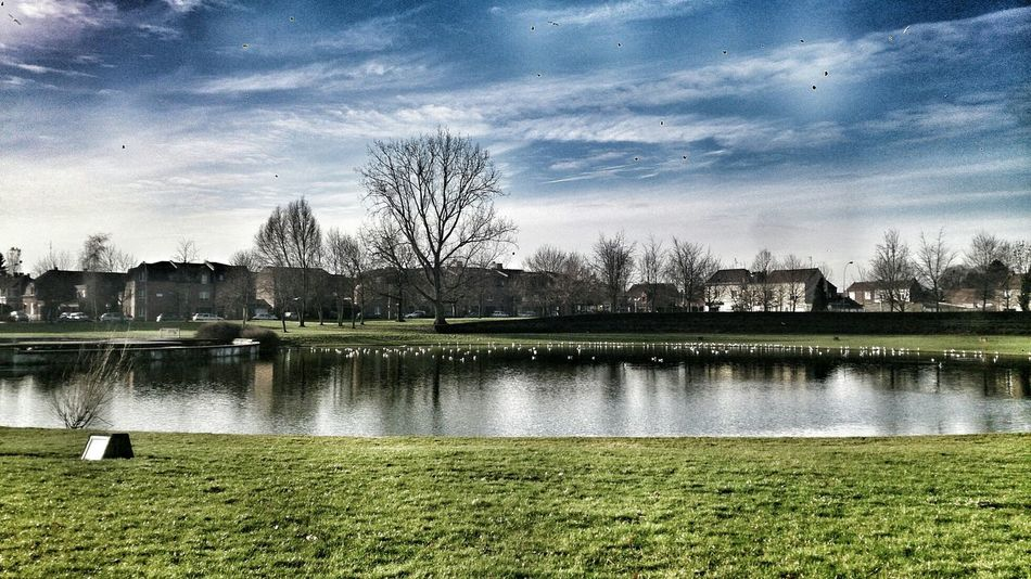 parc lille nature peace ✌ Life is a gift people used to love trouble than love that why they still be sick of life