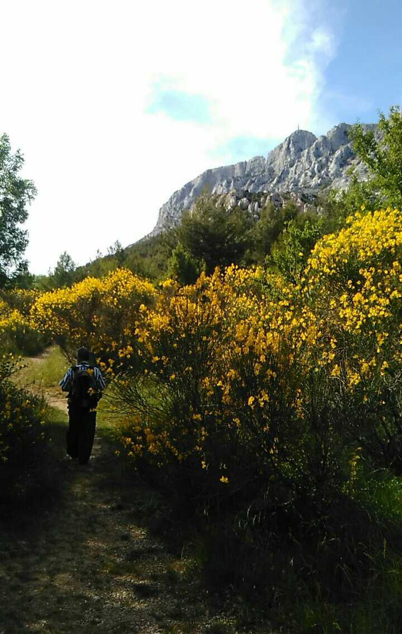 Walking Around Escaping Sainte Victoire Aix En Provence Take A Walk Sunday