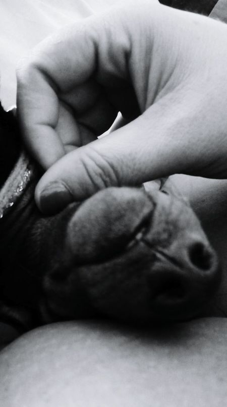 Loves_world Blackandwhitephotography Eyemphotography Eyemdog Ilovemydog Dogstagram Dogblackandwhite. Loves_bnw I Love My Dog Eyemblackandwhite