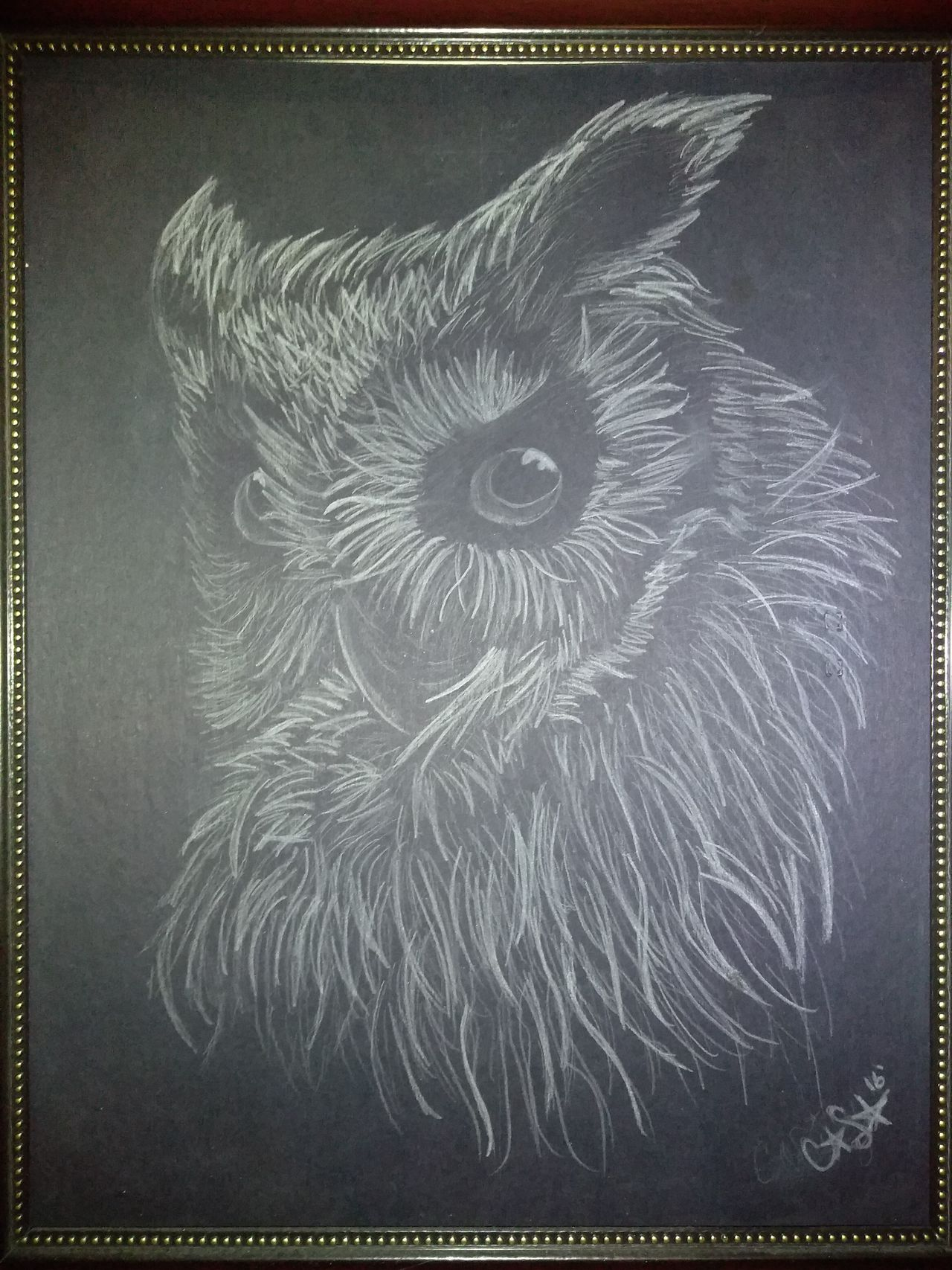 Owl Art Owls Drawing Art Black Canvas Owl Sketch Art Therapy I Love Drawing Creativity No People Close-up Original Artwork Works Of Art Owl Drawing Birds Of EyeEm  White Pencils Art Is Life Creative Power Creativity Has No Limits The Arts Crowd My Artwork Never Stop Creating