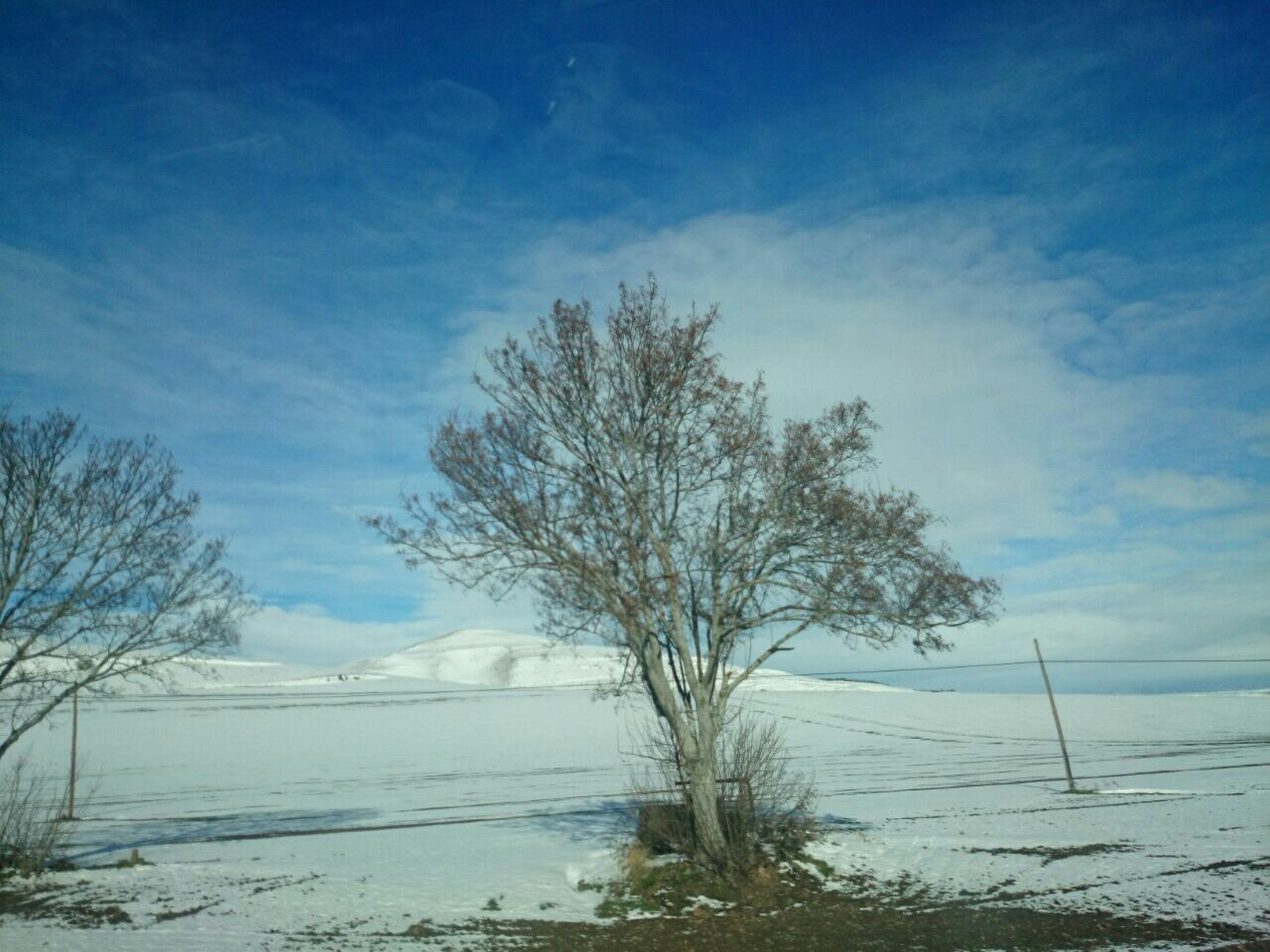sky, tranquility, tranquil scene, water, scenics, tree, beauty in nature, bare tree, nature, blue, cloud - sky, cloud, branch, day, outdoors, no people, landscape, non-urban scene, lake, idyllic