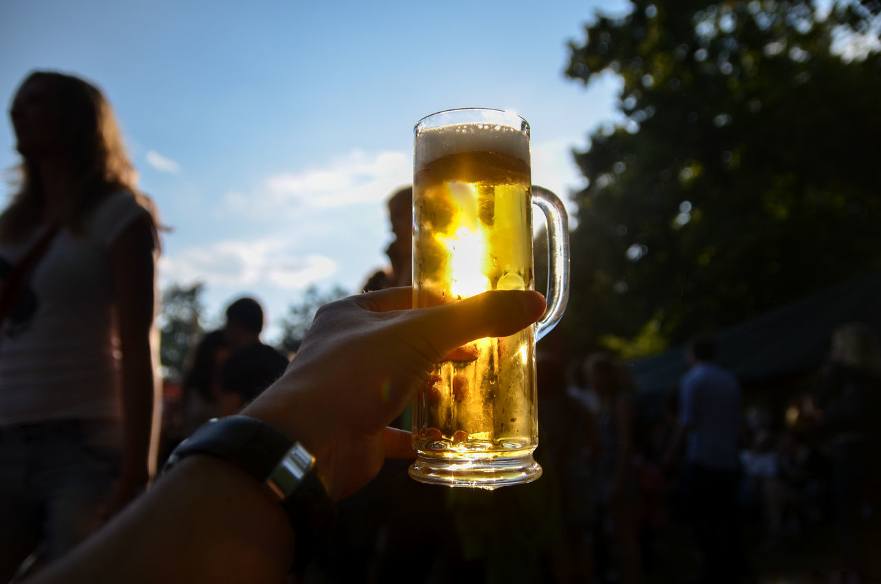 Adult Adults Only Alcohol Beer - Alcohol Beer Glass Bonding Celebration Celebratory Toast Close-up Drink Drinking Drinking Glass Food And Drink Friendship Happy Hour Holding Human Body Part Human Hand Leisure Activity Only Women Party - Social Event People Refreshment Togetherness Women