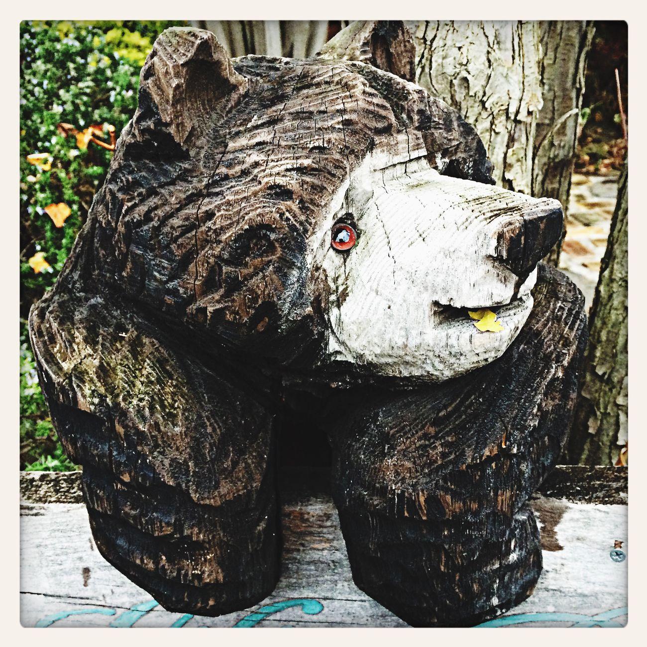 新百合ケ丘リリエンベルグのクマさん。