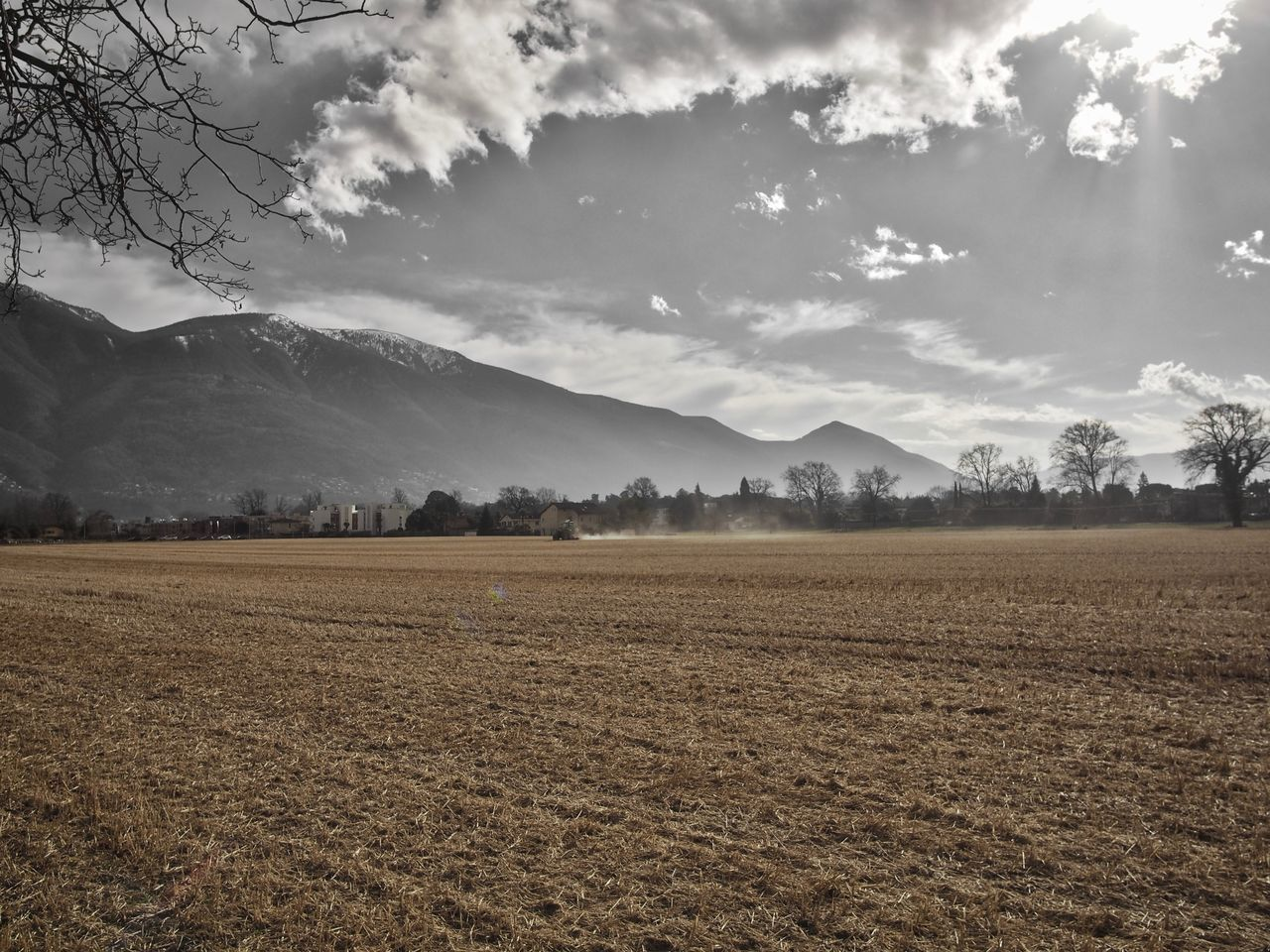 agriculture, cloud - sky, mountain, landscape, sky, growth, no people, tree, nature, outdoors, day