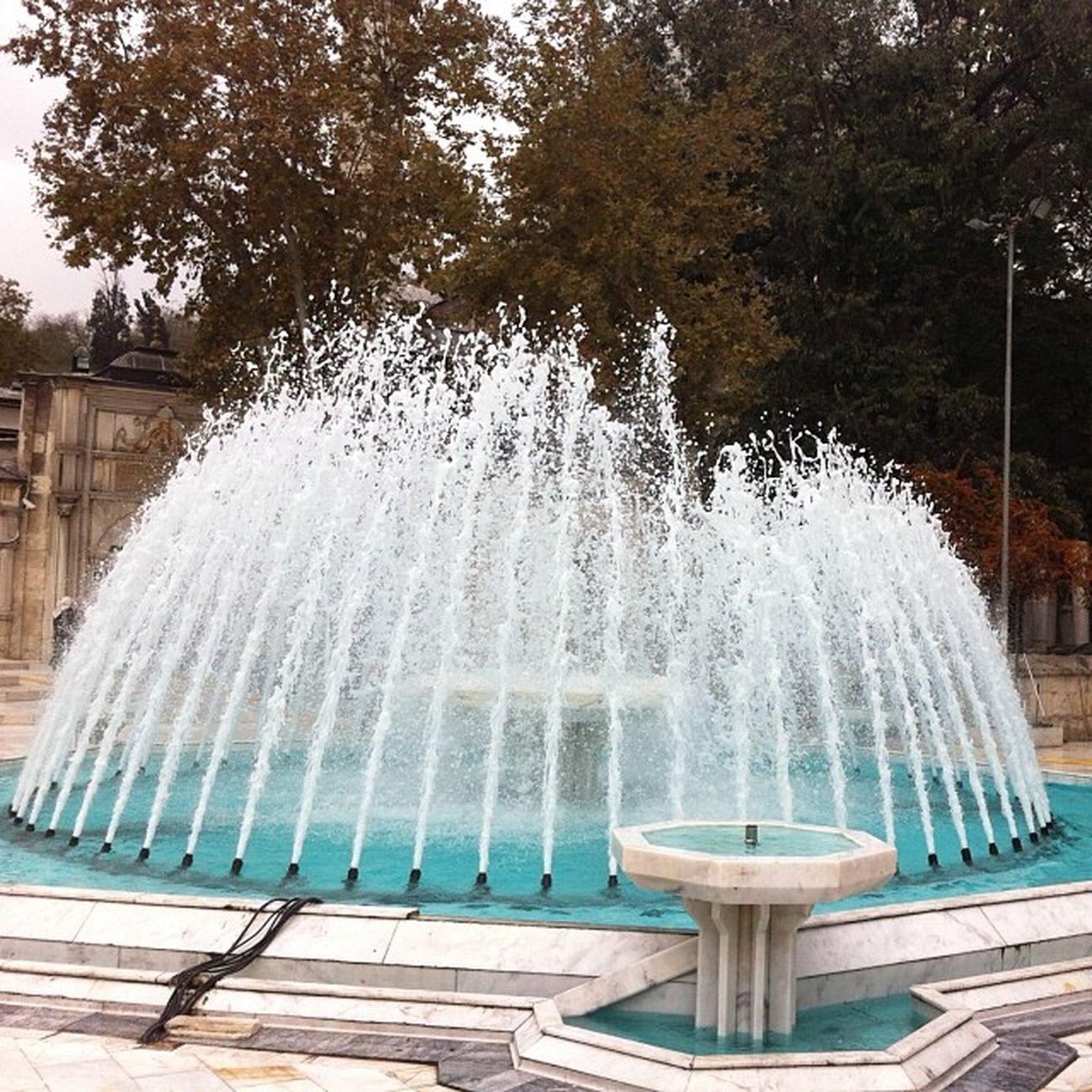 Eyüpsultan  Eyüp Istanbul Fiskiye nature manzara