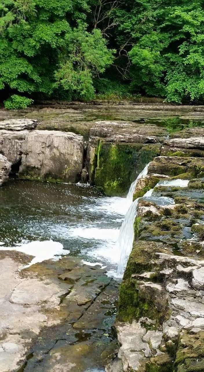 water, nature, waterfall, rock - object, outdoors, no people, beauty in nature, day, tree, tranquil scene, scenics, tranquility, motion, forest, river, green color, plant