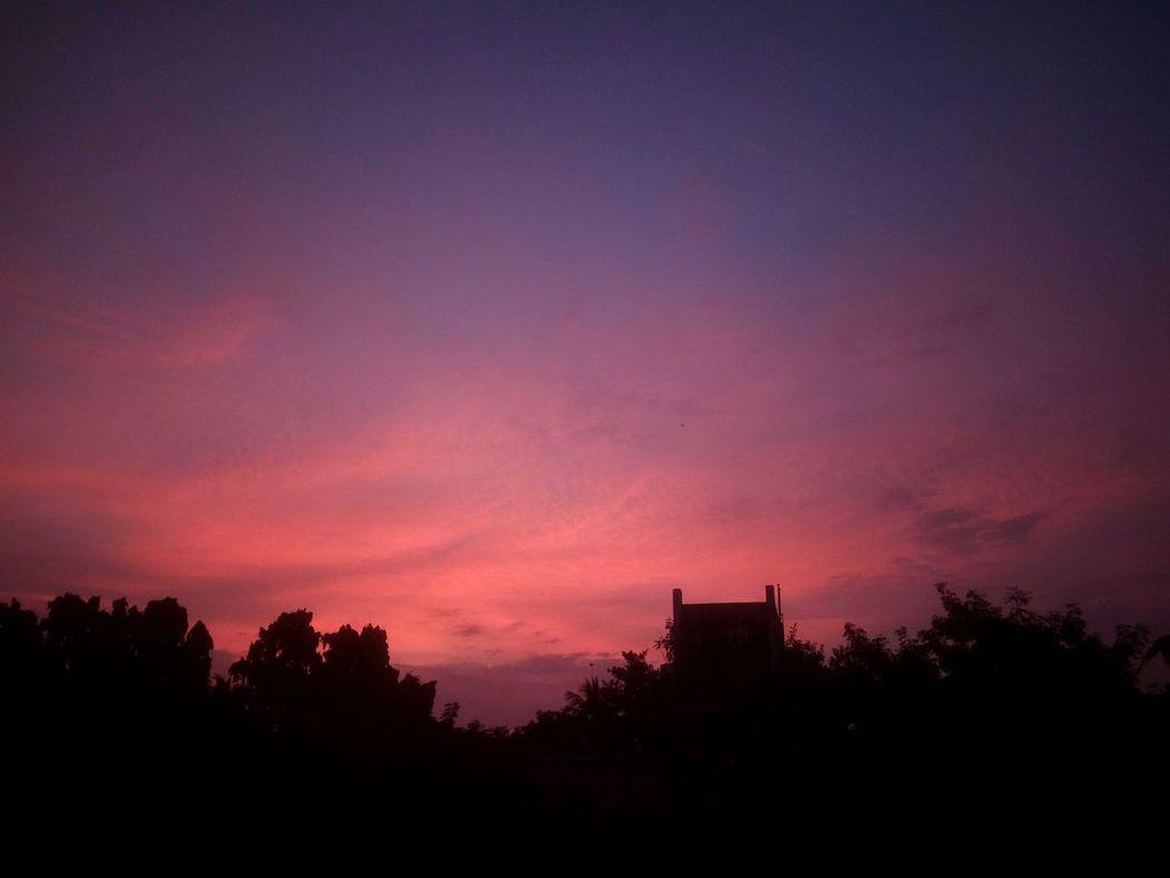 Sunset Tree City Nature Beauty In Nature Sky Dramatic Sky Scenics No People Outdoors Chennai India City Evening