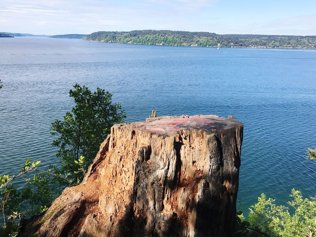 Owen Beach, Tacoma, WA. Water Nature Beauty In Nature Day No People Sea Tranquility Scenics High Angle View Tree Outdoors Tranquil Scene Mountain Sky First Eyeem Photo