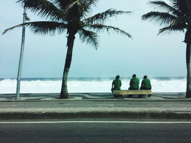 Men Palm Tree Sitting Togetherness Lifestyles Water Sea Horizon Over Water Outdoors Tranquil Scene