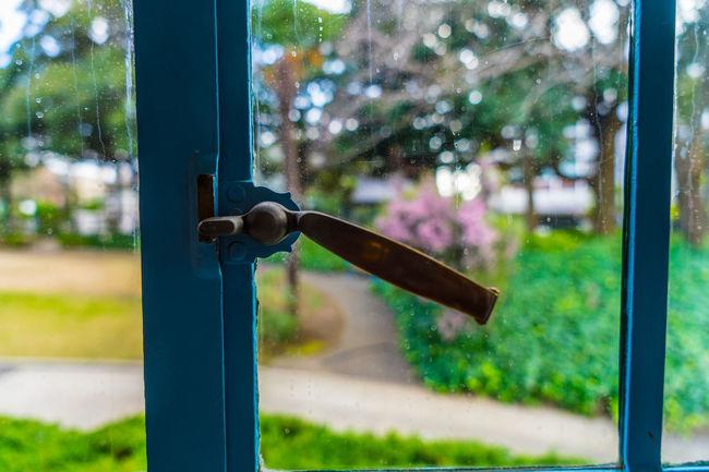Window Window Light And Shadow Room Landscape Landscape_Collection Landscape_photography Eye4photography  EyeEm Best Shots