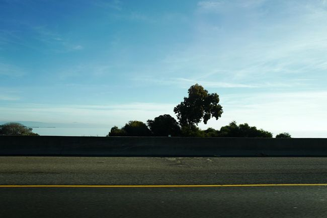 Highway Yellow Line Tree Horizon Sea View From My Window Drive By Shooting