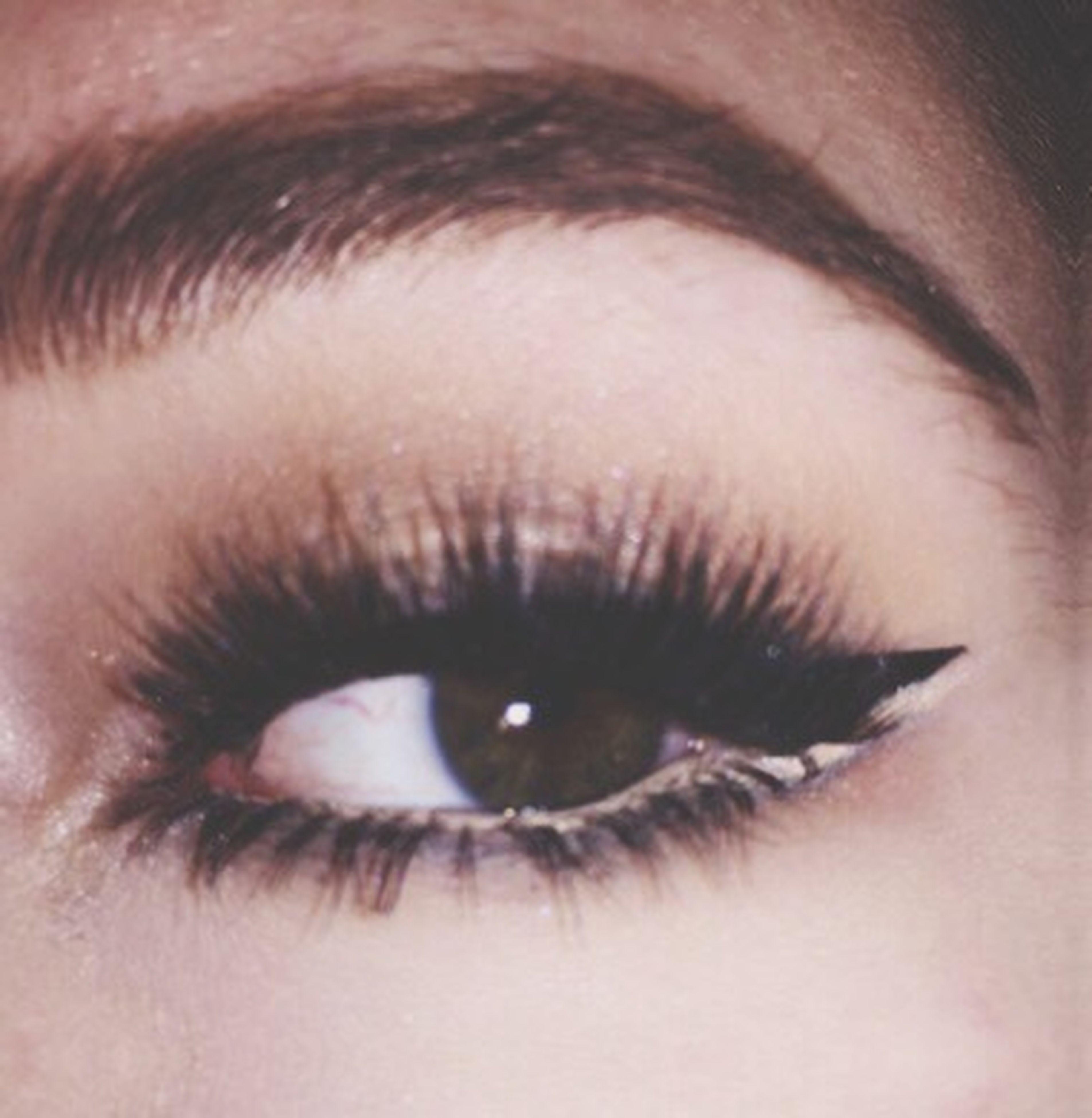 human eye, eyelash, looking at camera, eyesight, close-up, part of, portrait, staring, sensory perception, eyebrow, extreme close-up, human face, focus on foreground, eyeball, macro, person, full frame, human skin, make-up, extreme close up, iris - eye, young adult, one woman only, beauty, vision