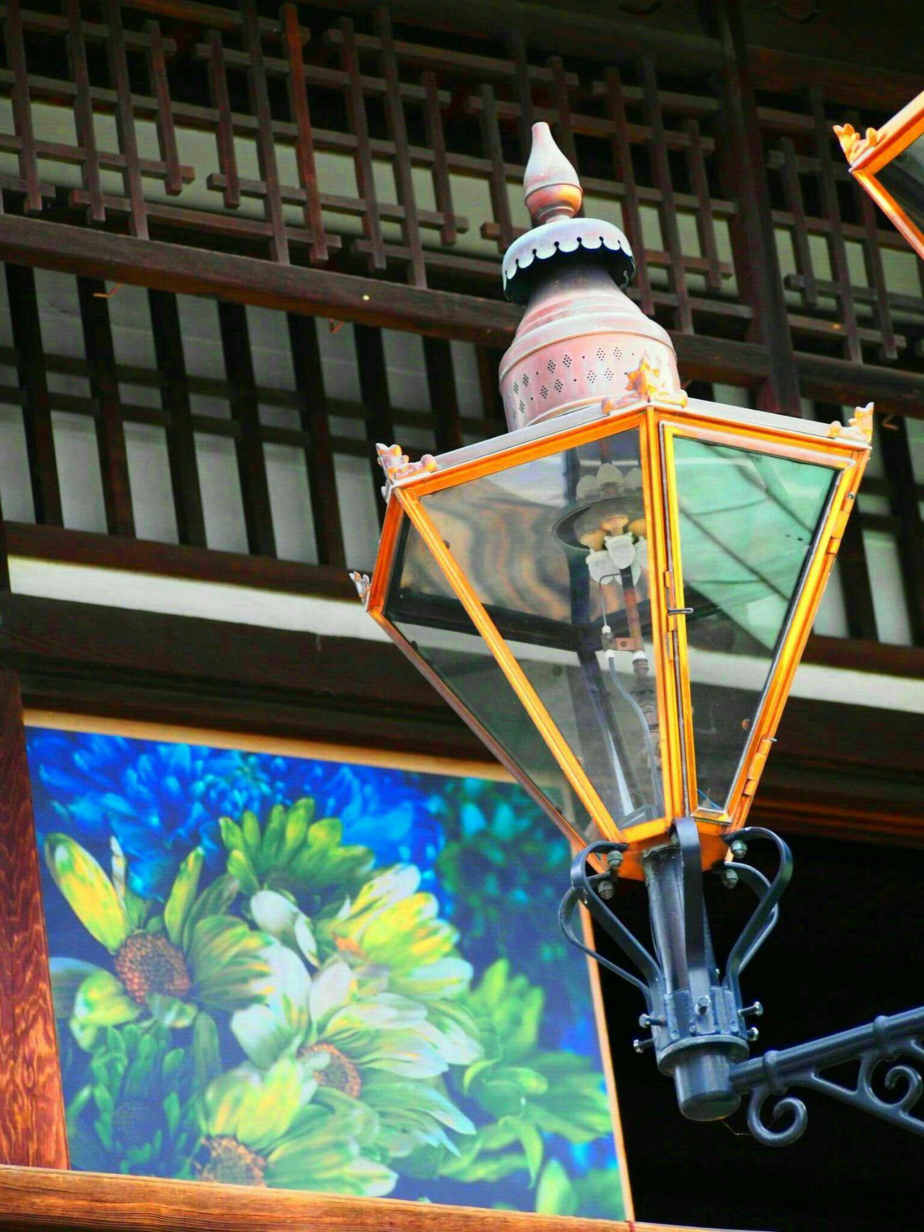 道後オンセナート2015 道後温泉 アート 街並み Flower Japan Photography