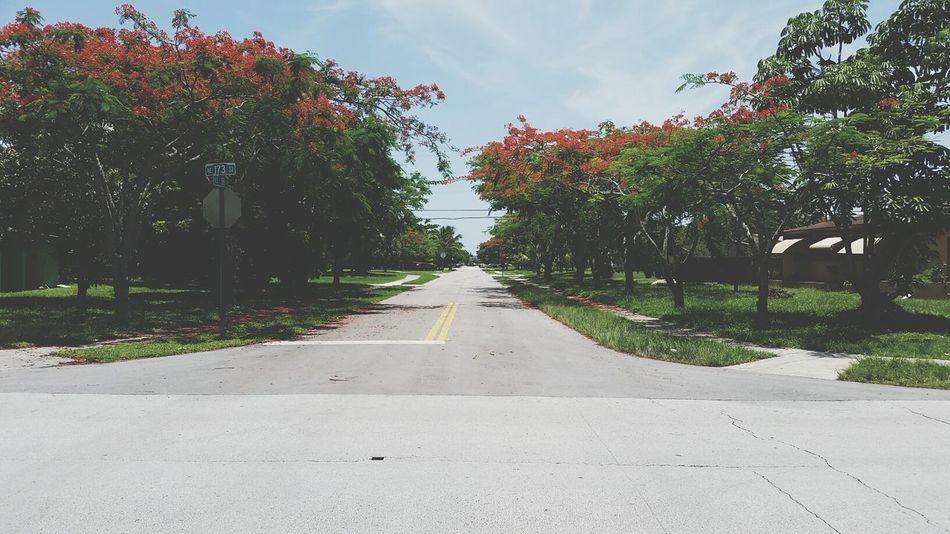 Beautiful stock photos of city, Day, Double Yellow Line, Empty, Empty Road