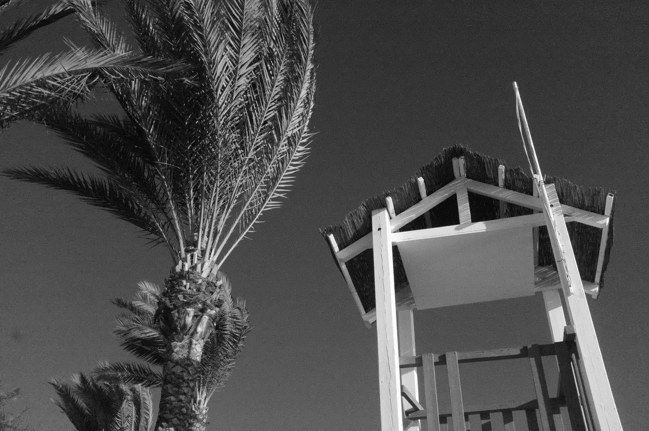 Beachphotography EyeEm Gallery EyeEm Best Shots - Black + White EyeEm Beach Photography Noedit Redfilter