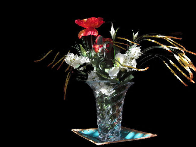 Composition of white roses and red poppies on black background Arranging Black Blossom Bouquet Bunch Celebration Centrepiece Centrotavola Composition Decor Decorating Event Flower Flower Arrangement Flower Head Holiday Holidays And Celebrations Illuminated Isolated On Black Red Poppies Season  Setting Still Life Symbol White Rose
