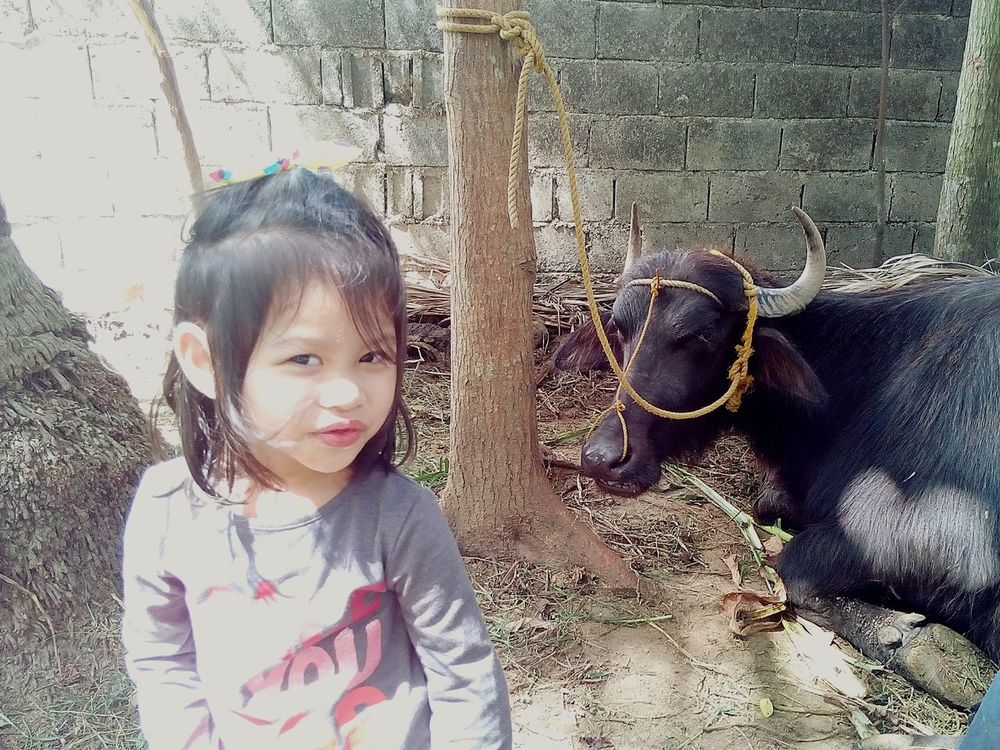 My Kid Carabao Check This Out