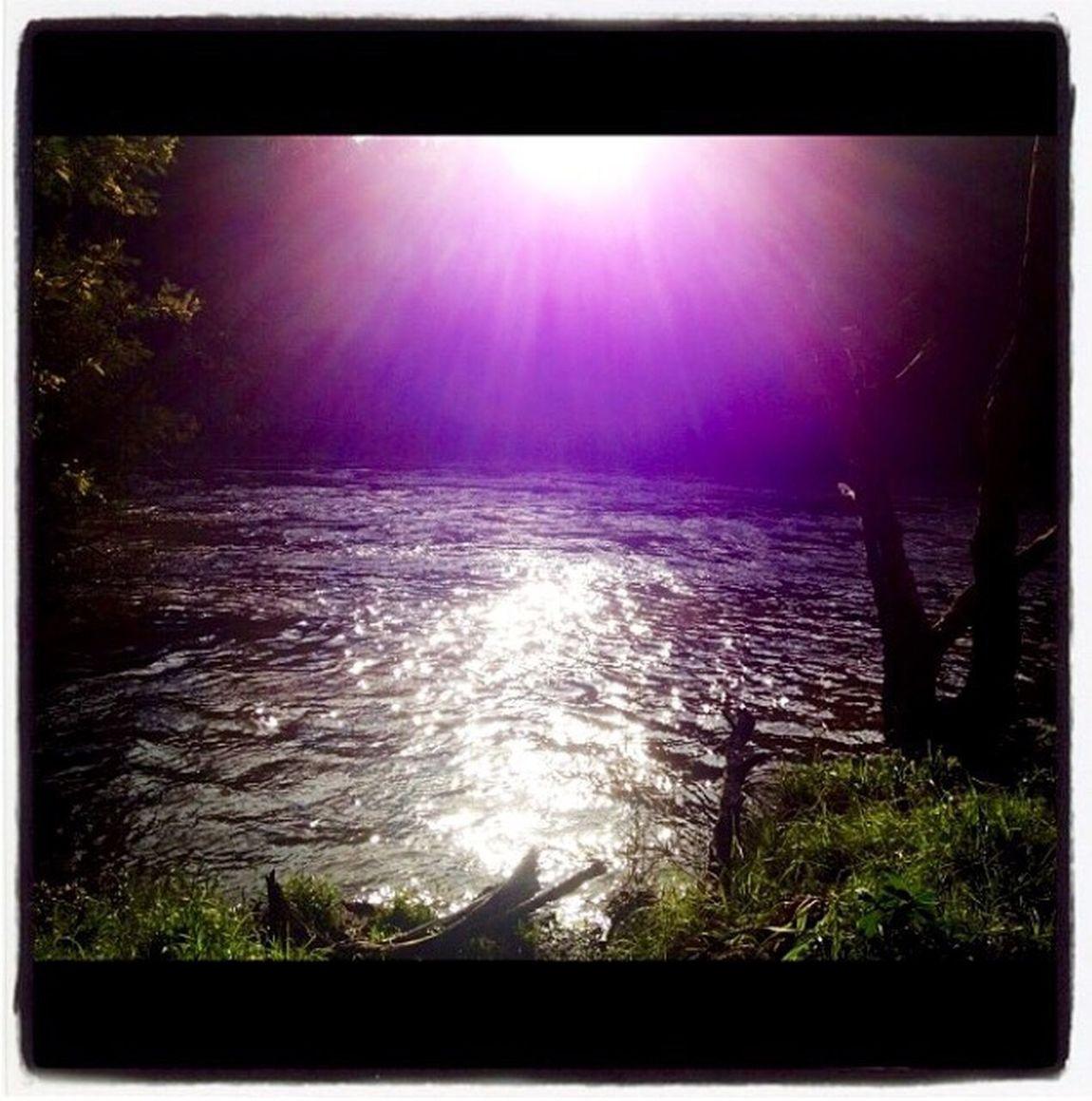 The Lake of Warrandyte. 💜💜💜 Warrandyte Magical Lake Fantasy Sunshining Reflection Sparkling Thelakeofwarrandyte Pretty Purple Water 💜💜💜