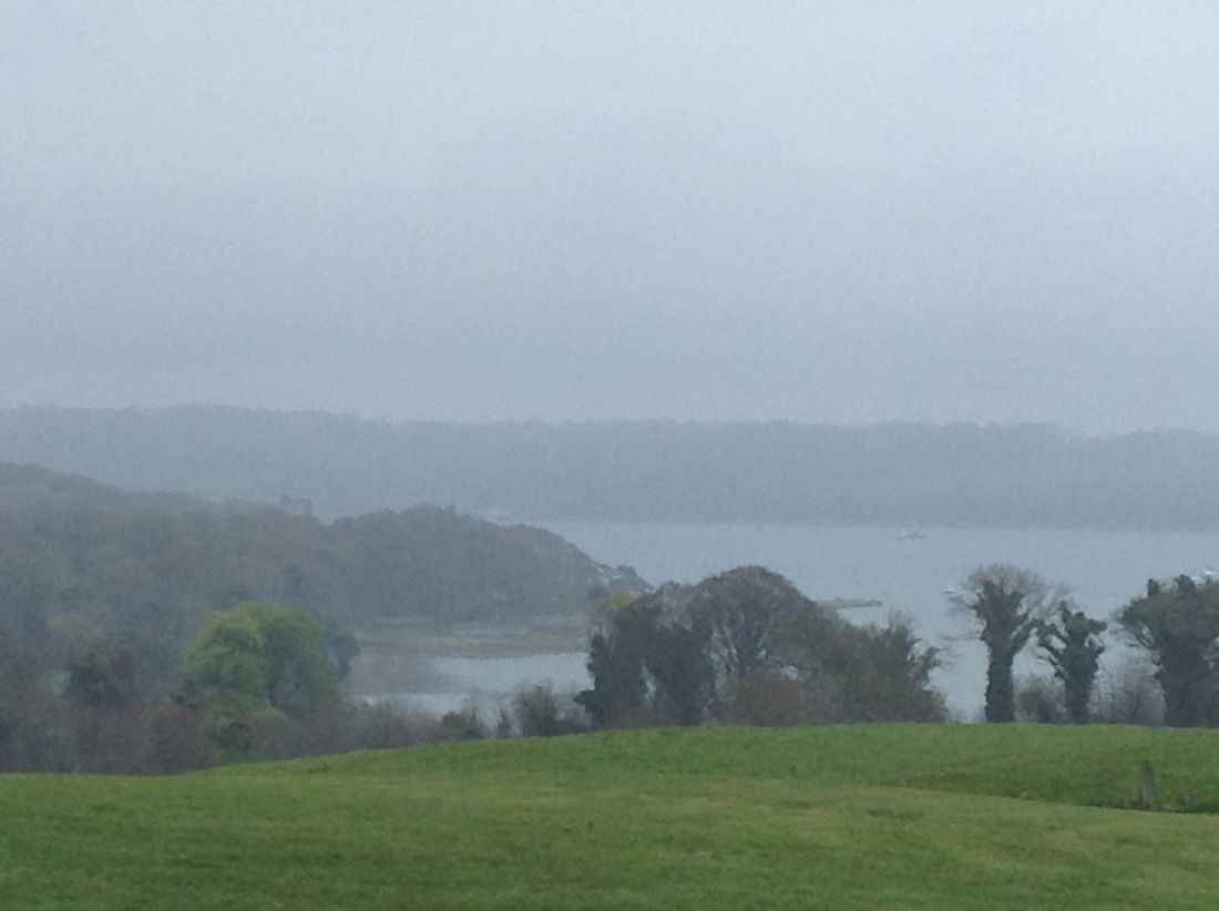Game of Thrones film site. Beauty In Nature Copy Space County Down Field Fog Foggy Grass Growth Idyllic Lake Landscape Mountain Nature Non-urban Scene Northern ıreland Scenics Sky Strangford Lough Tranquil Scene Tranquility Tree Water