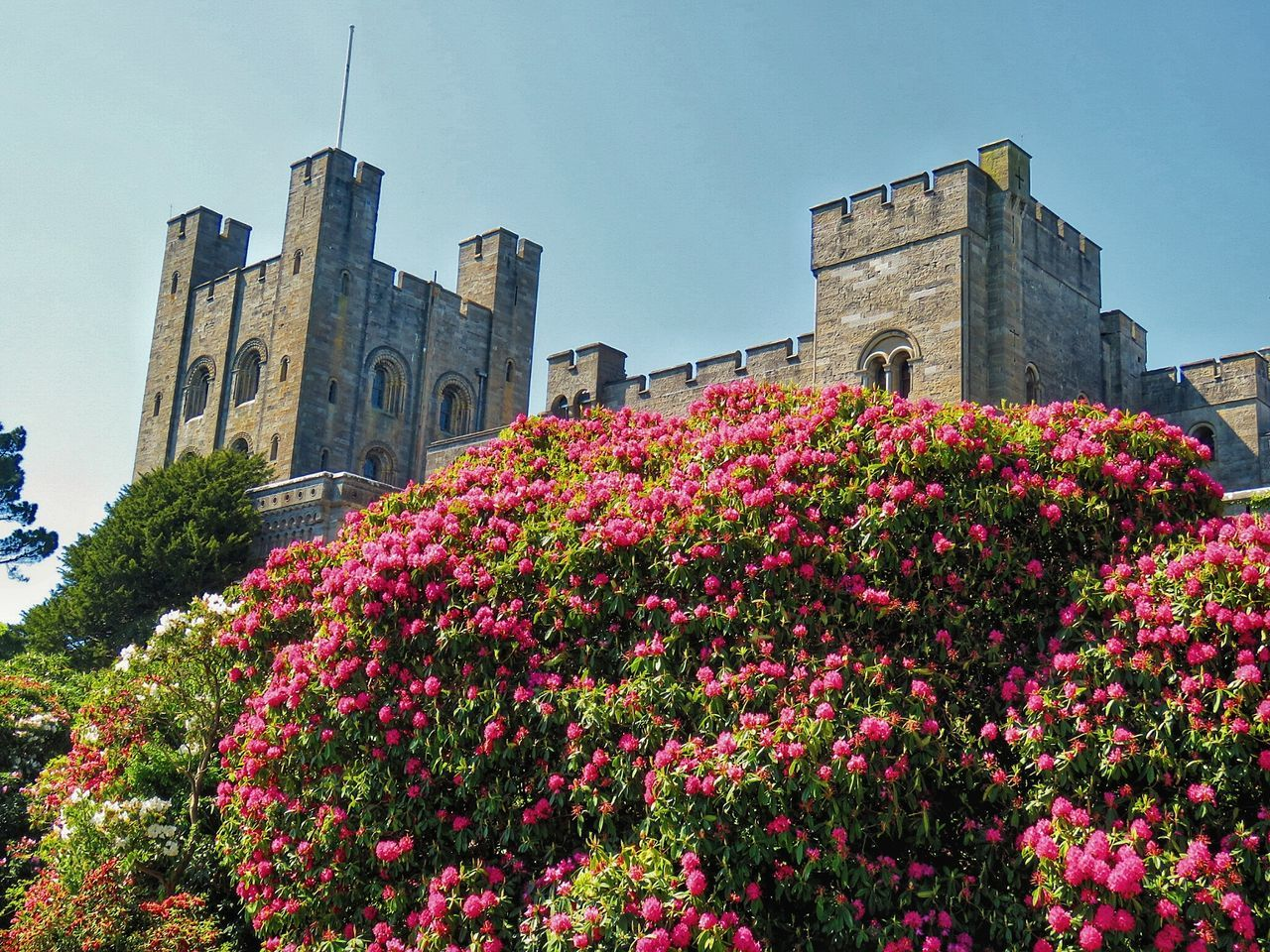 Penrhyn castle,, north wales, uk.. Architecture Building Exterior Outdoors History Travel Destinations Castle Architecture Castles Castle View  Castle Grounds History Architecture Historical Building Historical Architecture Historic Buildings  History Through The Lens  Historical Sites Colour Photography EyeEm Gallery Eyem Best Shot - Architecture The Great Outdoors - 2017 EyeEm Awards Structures And Architecture Statley Homes Architecture Photography Architectural Photography Structure Photography