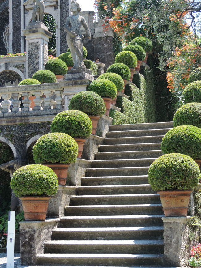 Abundance Beauty In Nature Day Green Green Color Growth Italia Italy Lago Maggiore Lago Maggiore, Italy Nature No People Outdoors Plant Repetition Tranquility Travel Destinations