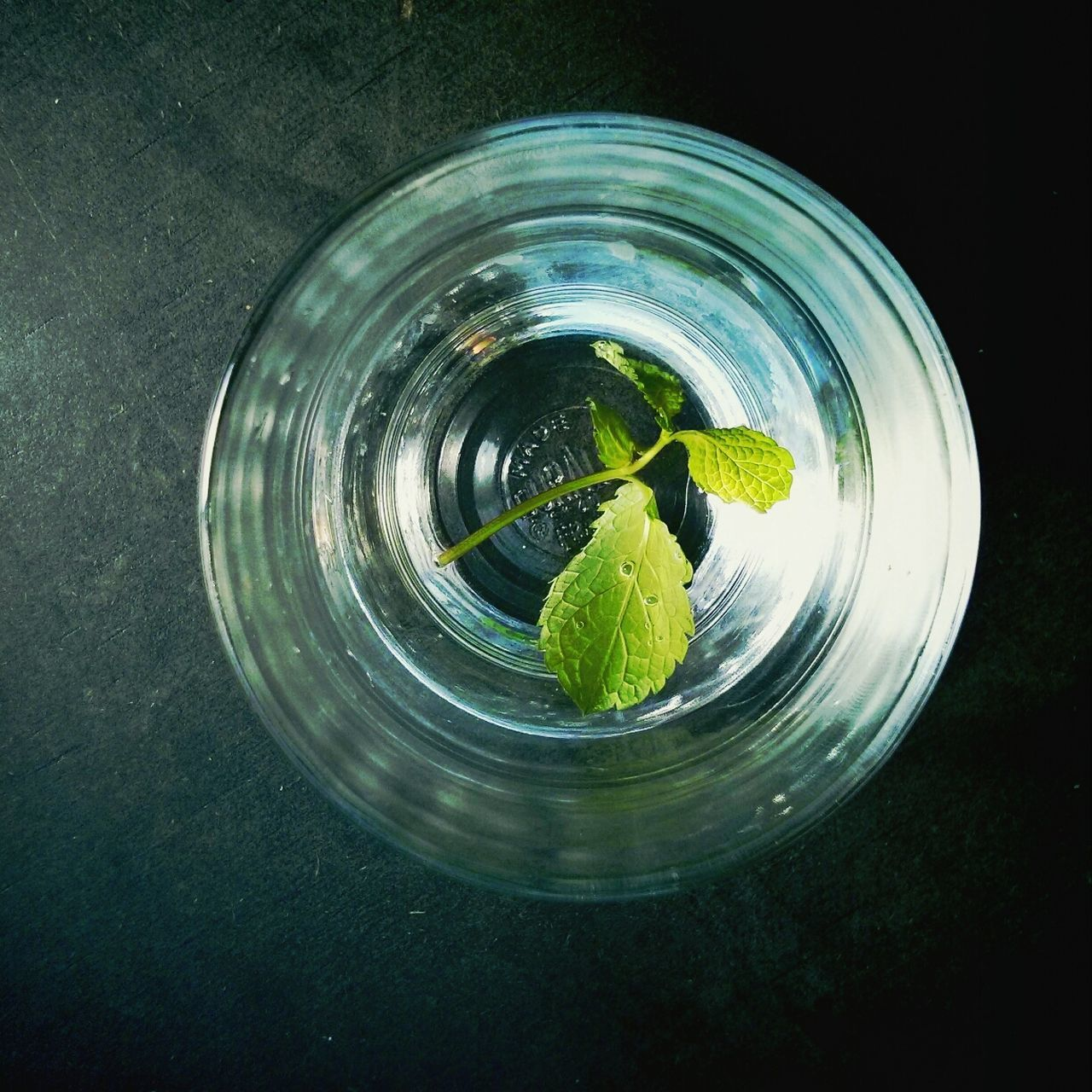 Close-Up Of Mint Leaf With Glass Of Water