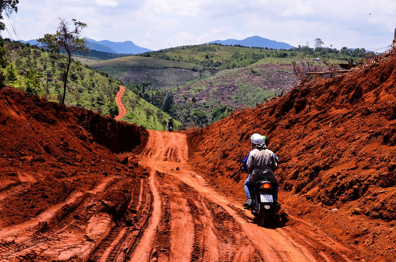 Deforest Adventure Blue Sky Day Deforest Devastated Forest Lam Dong, Viet Nam Land Landscape Landscape_Collection Landscape_photography Lifestyles Men Mountain Mountain Range One Person Outdoor Photography Outdoors Real People Rear View Riding Road Sonjewelphotographer Street đà Tẻh