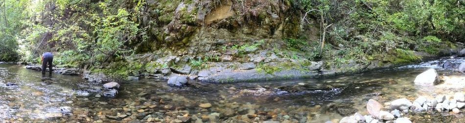 1st Try Panoramic View Relaxing Taking Photos Enjoying Life Hiking Day Daylight Trees And Leaves Creekside Trees Creek Outdoor Photography Daytime Peace Peace And Quiet Conconully,WA Outdoors Nature Water Peaceful Rear View Bent Over Rocks And Water Shorelines The Week On Eyem My Year My View