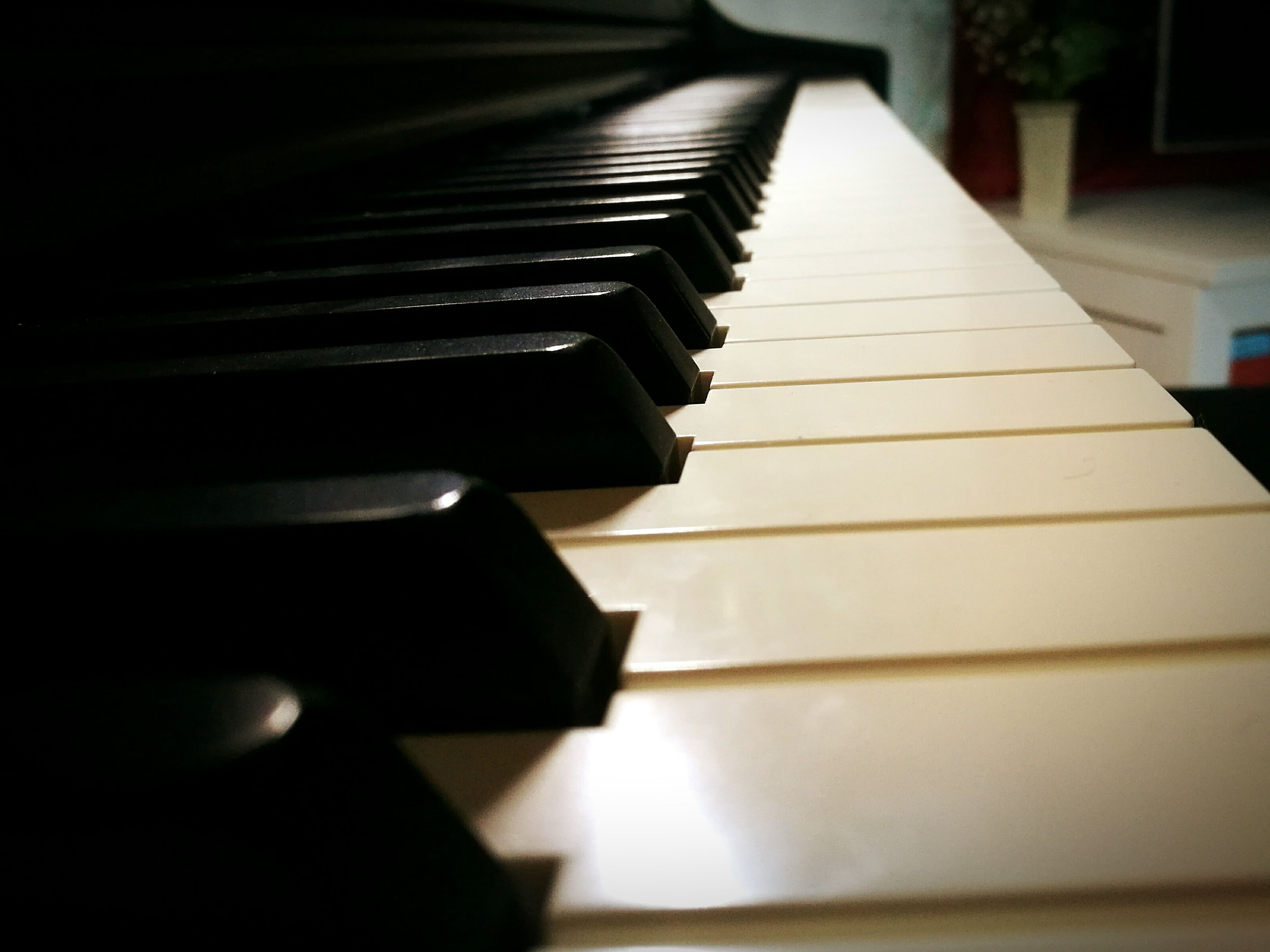 piano key, piano, musical instrument, music, arts culture and entertainment, musical equipment, close-up, no people, indoors, day