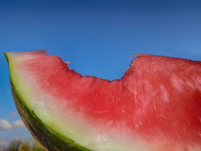 Blue Close-up Freshness No People Organic Part Of Red Refreshment Sky Water Melon