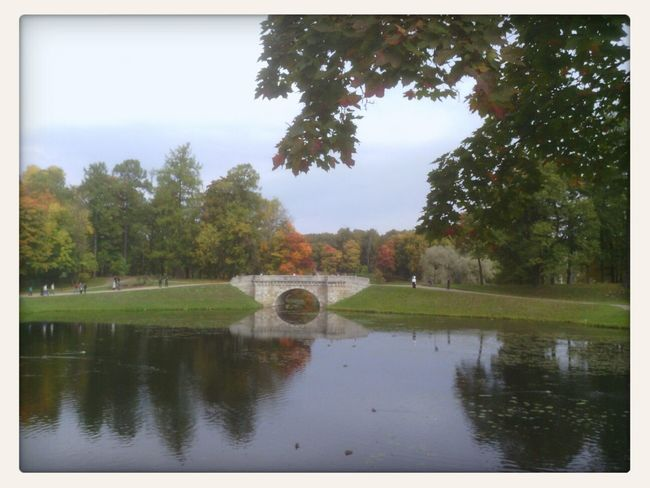 Walking In The Park гатчина
